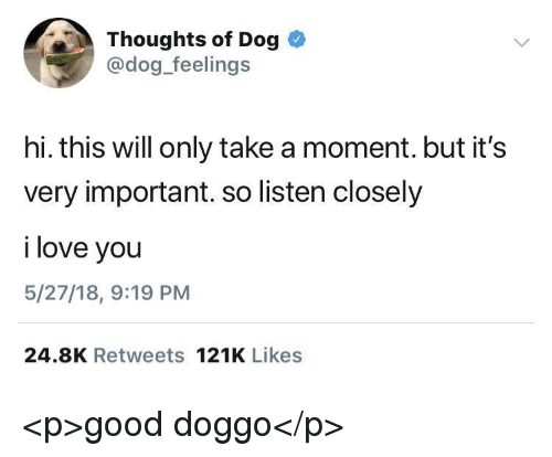 Love, I Love You, and Good: Thoughts of Dog  @dog_feelings  hi. this will only take a moment. but it's  very important. so listen closely  i love you  5/27/18, 9:19 PM  24.8K Retweets 121K Likes <p>good doggo</p>