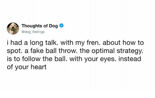 Dank, Fake, and Heart: Thoughts of Dog  @dog feelings  i had a long talk. with my fren. about how to  spot. a fake ball throw. the optimal strategy.  is to follow the ball. with your eyes. instead  of your heart