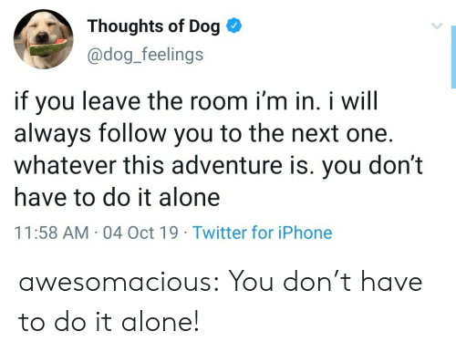 don't leave: Thoughts of Dog  @dog_feelings  if you  always follow you to the next one.  whatever this adventure is. you don't  leave the room i'm in. i will  have to do it alone  11:58 AM 04 Oct 19 Twitter for iPhone awesomacious:  You don't have to do it alone!