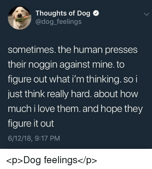 Love, Figure It Out, and Hope: Thoughts of Dog  @dog_feelings  sometimes. the human presses  their noggin against mine. to  figure out what i'm thinking. so i  just think really hard. about how  much i love them.and hope they  figure it out  6/12/18, 9:17 PM <p>Dog feelings</p>