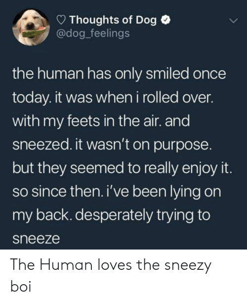 On Purpose: Thoughts of Dog  @dog_feelings  the human has only smiled once  today. it was when i rolled over.  with my feets in the air. and  sneezed. it wasn't on purpose.  but they seemed to really enjoy it  so since then. i've been lying on  my back. desperately trying to  sneeze The Human loves the sneezy boi