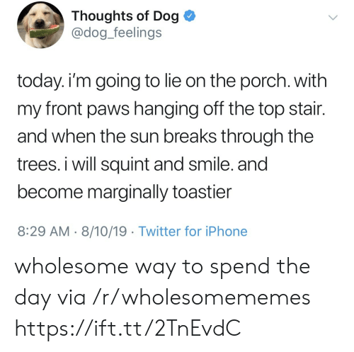 8 29: Thoughts of Dog  @dog_feelings  today. i'm going to lie on the porch. with  my front paws hanging off the top stair.  and when the sun breaks through the  trees. i will squint and smile. and  become marginally toastier  8:29 AM 8/10/19 Twitter for iPhone wholesome way to spend the day via /r/wholesomememes https://ift.tt/2TnEvdC