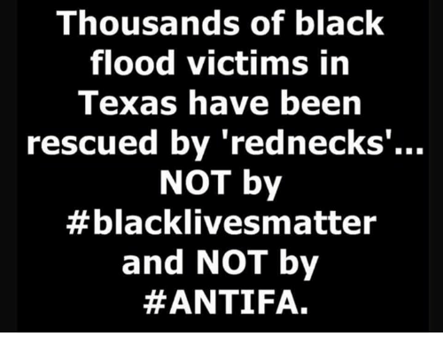 Memes, Black, and Blacked: Thousands of black  flood victims in  Texas have been  rescued by 'rednecks  NOT by  #blacklives matter  and NOT by