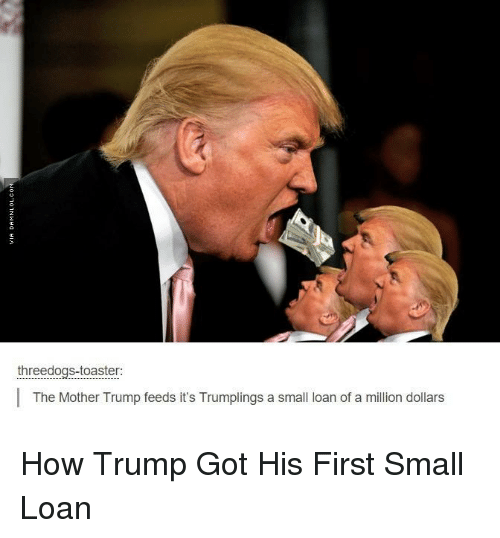 Small Loan: three dogs-toaster:  The Mother Trump feeds it's Trumplings a small loan of a million dollars How Trump Got His First Small Loan