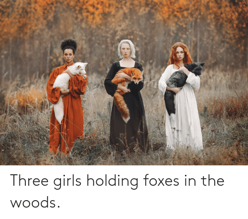 foxes: Three girls holding foxes in the woods.