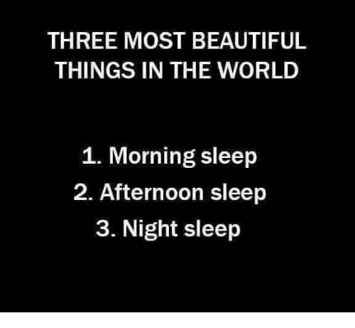 Three Most Beautiful Things In The World 1 Morning Sleep 2