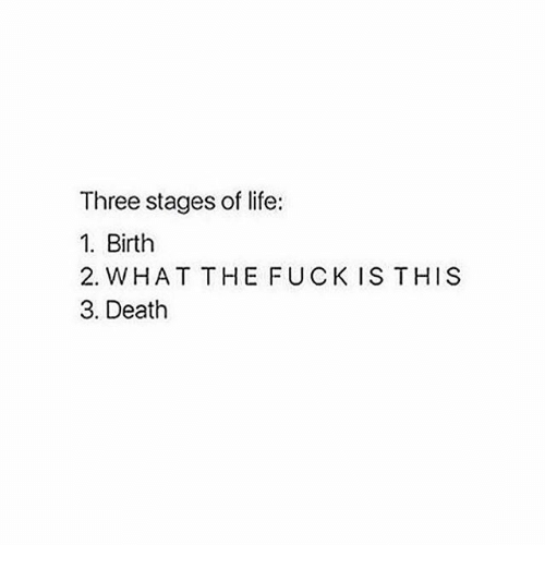 Memes, 🤖, and Deaths: Three stages of life:  1. Birth  2. WHAT THE FUCK IS THIS  3. Death
