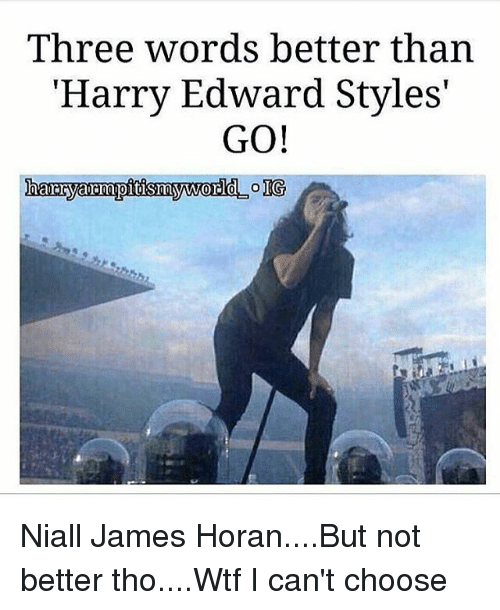 """Memes, Wtf, and 🤖: Three words better than  """"Harry Edward Styles'  GO!  harryarmupitismyword  IG Niall James Horan....But not better tho....Wtf I can't choose"""