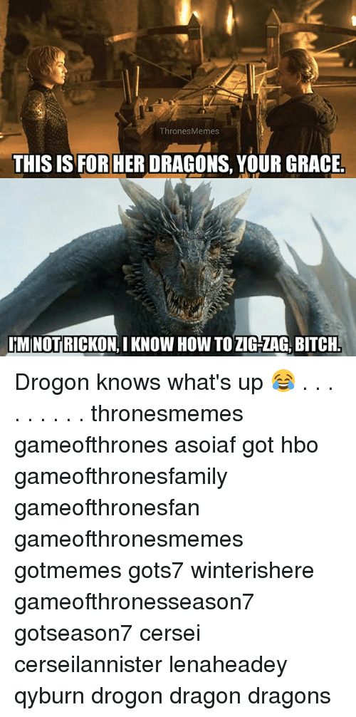 Rickon: ThronesMemes  THIS IS FOR HER DRAGONS, YOUR GRACE  IMINOT RICKON.I KNOW HOW TOZIG-ZAG, BITCH Drogon knows what's up 😂 . . . . . . . . . thronesmemes gameofthrones asoiaf got hbo gameofthronesfamily gameofthronesfan gameofthronesmemes gotmemes gots7 winterishere gameofthronesseason7 gotseason7 cersei cerseilannister lenaheadey qyburn drogon dragon dragons