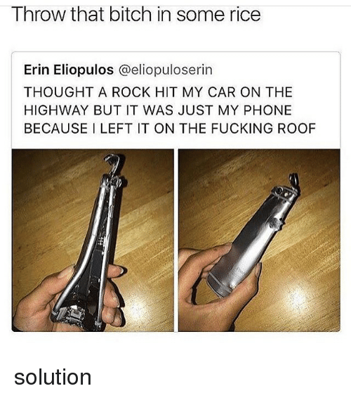 Bitch, Fucking, and Memes: Throw that bitch in some rice  Erin Eliopulos @eliopuloserin  THOUGHT A ROCK HIT MY CAR ON THE  HIGHWAY BUT IT WAS JUST MY PHONE  BECAUSE I LEFT IT ON THE FUCKING ROOF solution