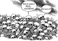 But It Wasnt Real Socialism