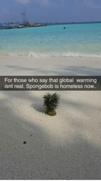 Global Warming Isnt Real
