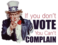 If You Dont Vote You Cant Complain