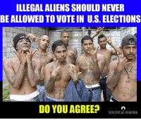 Illegal Aliens Should Never Be Allowed To Vote