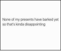None Of My Presents Have Barked Yet