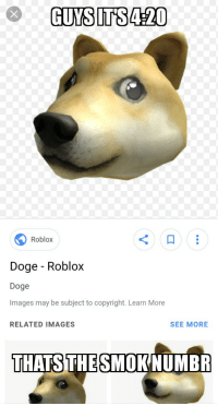 Roblox Doge Roblox Doge Images May Be Subject To Copyright Learn