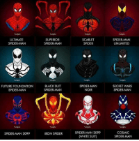 ULTIMATE SPIDER...