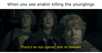 Anakin Killing The Younglings