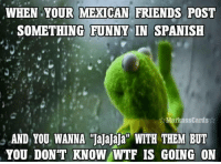 Mexican Friends