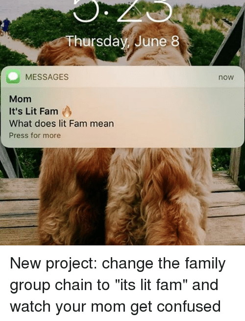 """Confused, Fam, and Family: Thursdav June 8  now  MESSAGES  Mom  It's Lit Fam  What does lit Fam mean  Press for more New project: change the family group chain to """"its lit fam"""" and watch your mom get confused"""