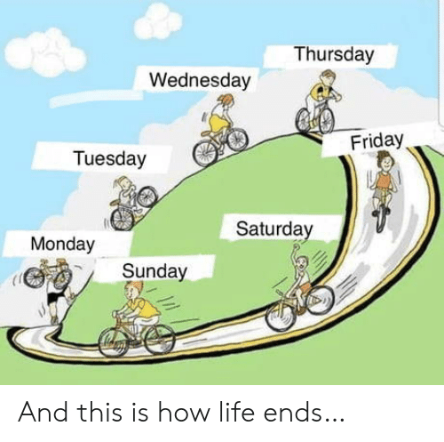 thursday: Thursday  Wednesday  Friday  Tuesday  Saturday  Monday  Sunday And this is how life ends…