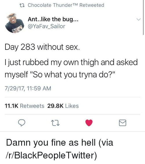 """You Fine: ti Chocolate ThunderTM Retweeted  Ant..like the bug...  @YaFav_Sailor  Day 283 without sex.  I just rubbed my own thigh and asked  myself """"So what you tryna do?""""  7/29/17, 11:59 AM  11.1K Retweets 29.8K Likes  10 <p>Damn you fine as hell (via /r/BlackPeopleTwitter)</p>"""