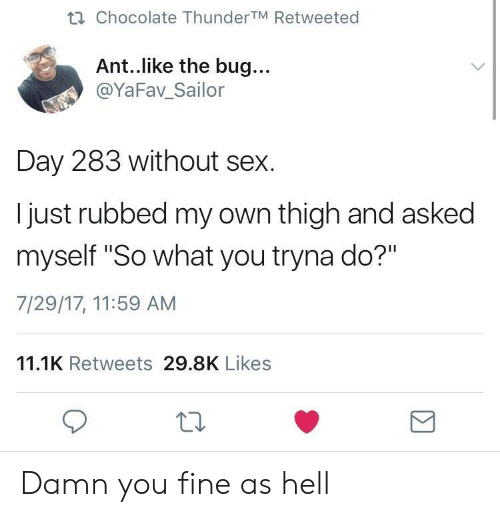 """You Fine: ti Chocolate ThunderTM Retweeted  Ant..like the bug...  @YaFav_Sailor  Day 283 without sex.  I just rubbed my own thigh and asked  myself """"So what you tryna do?""""  7/29/17, 11:59 AM  11.1K Retweets 29.8K Likes  10 Damn you fine as hell"""