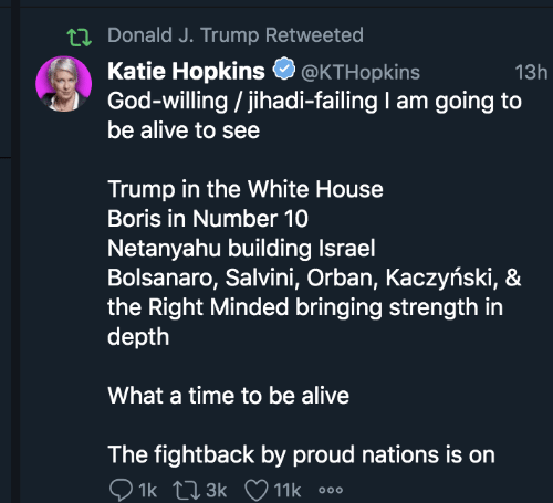Salvini: tI Donald J. Trump Retweeted  Katie Hopkins  God-willing / jihadi-failing I am going to  be alive to see  @KTHopkins  13h  Trump in the White House  Boris in Number 10  Netanyahu building Israel  Bolsanaro, Salvini, Orban, Kaczyński, &  the Right Minded bringing strength in  depth  What a time to be alive  The fightback by proud nations is on  1k L3k V11k o00