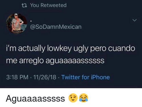 Lowkey: ti You Retweeted  @SoDamnMexican  i'm actually lowkey ugly pero cuando  me arreglo aguaaaaassssss  3:18 PM . 11/26/18 Twitter for iPhone Aguaaaasssss 😉😂