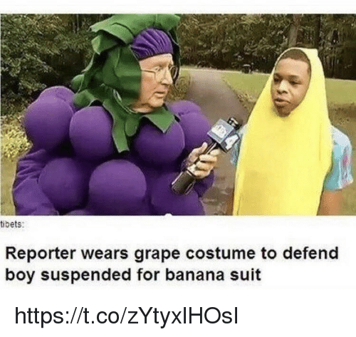 Memes, Banana, and Boy: tibets:  Reporter wears grape costume to defend  boy suspended for banana suit https://t.co/zYtyxlHOsI
