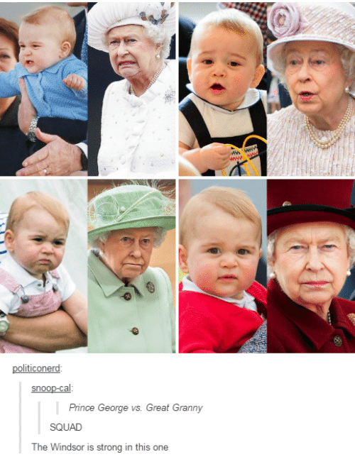 Dank, 🤖, and Snoo: ticonerd  SnOO  Prince George vs. Great Granny  SQUAD  The Windsor is strong in this one