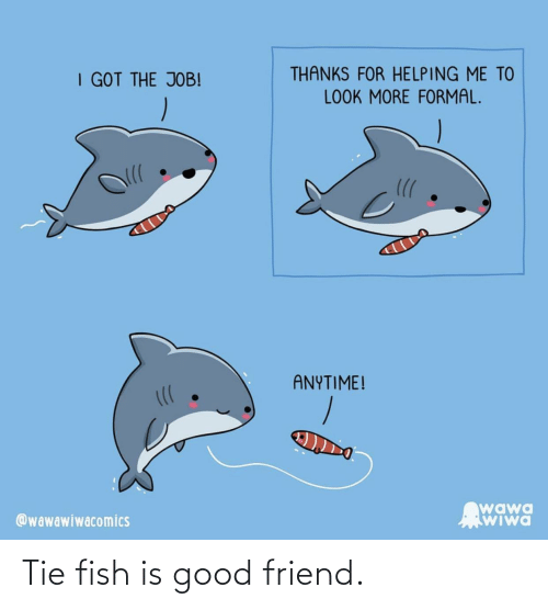 Fish: Tie fish is good friend.
