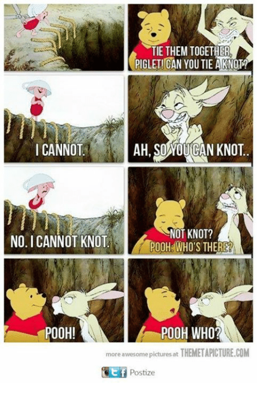 Memes, Pictures, and Awesome: TIE THEM TOGETHER  PIGLETICAN YOU TIE A KNOTA  AH SOWOUGAN KNOT  I CANNOT  NOT KNOT?  NO I CANNOT KNOT  POOH WHO'S THERE  POOH!  POOH WHO?  more awesome pictures at  THEMETAPICTURE.COM  Postize