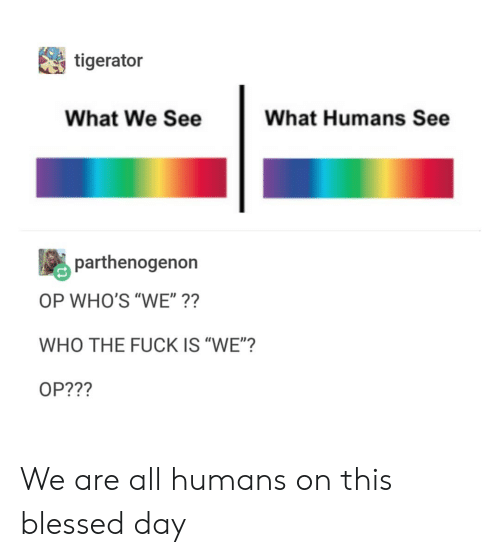 """blessed day: tigerator  What We See  What Humans See  parthenogenon  OP WHO'S """"WE""""??  WHO THE FUCK IS """"WE""""?  OP???  it We are all humans on this blessed day"""