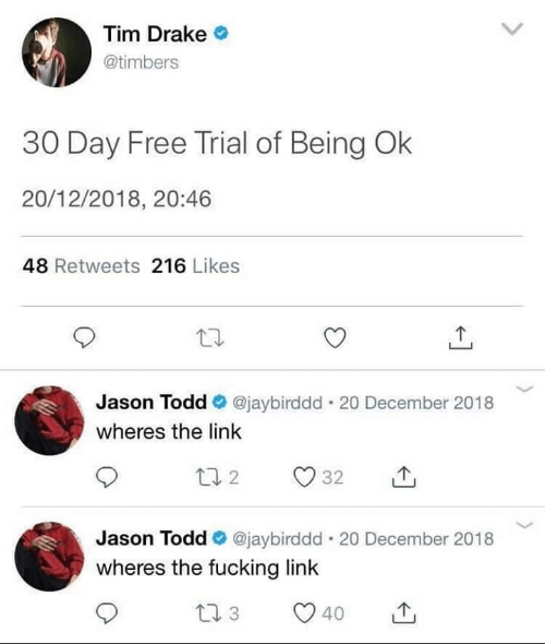 Timbers: Tim Drake  @timbers  30 Day Free Trial of Being Ok  20/12/2018, 20:46  48 Retweets 216 Likes  Jason Todd @jaybirddd . 20 December 2018  wheres the link  Jason Todd e. @jaybirddd-20 December 2018  wheres the fucking link  40