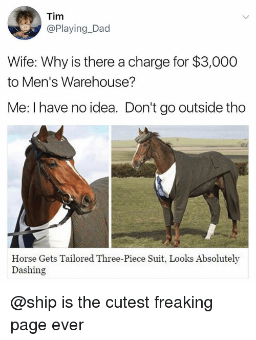 mens warehouse: Tim  Playing Dad  Wife: Why is there a charge for $3,000  to Men's Warehouse?  Me: I have no idea. Don't go outside tho  Horse Gets Tailored Three-Piece Suit, Looks Absolutely  Dashing @ship is the cutest freaking page ever
