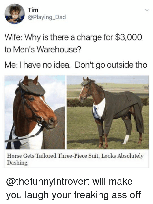 Ass, Dad, and Memes: Tim  @Playing Dad  Wife: Why is there a charge for $3,000  to Men's Warehouse?  Me: have no idea. Don't go outside tho  Horse Gets Tailored Three-Piece Suit, Looks Absolutely  Dashing @thefunnyintrovert will make you laugh your freaking ass off