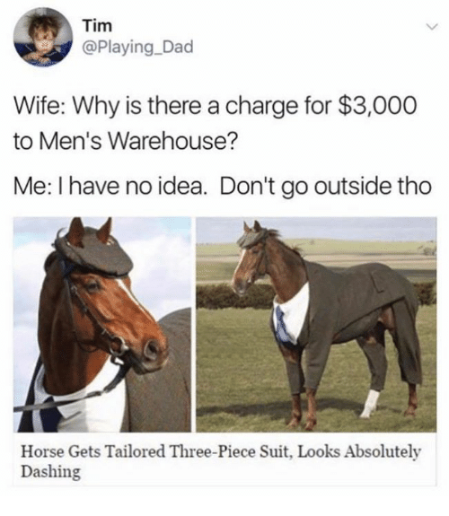 mens warehouse: Tim  @Playing Dad  Wife: Why is there a charge for $3,000  to Men's Warehouse?  Me: I have no idea. Don't go outside tho  Horse Gets Tailored Three-Piece Suit, Looks Absolutely  Dashing