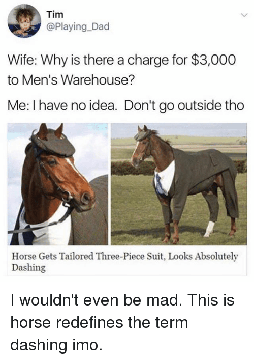 mens warehouse: Tim  @Playing Dad  Wife: Why is there a charge for $3,000  to Men's Warehouse?  Me: I have no idea. Don't go outside tho  Horse Gets Tailored Three-Piece Suit, Looks Absolutely  Dashing I wouldn't even be mad. This is horse redefines the term dashing imo.