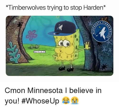 Minnesota, Timberwolves, and Believe: *Timberwolves trying to stop Harden*  2  0  ONBAMEMES Cmon Minnesota I believe in you! #WhoseUp 😂😭
