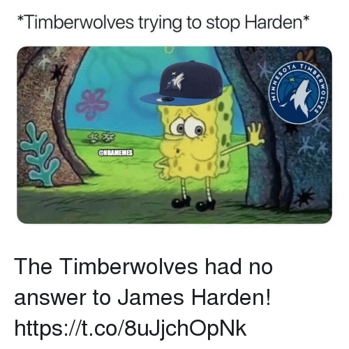 James Harden, Memes, and 🤖: Timberwolves trying to stop Harden* The Timberwolves had no answer to James Harden! https://t.co/8uJjchOpNk