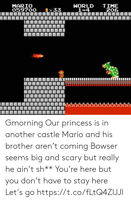 castle: TIME  206  MARIO  059700  WORLD  _1-4  33 Gmorning  Our princess is in another castle Mario and his brother aren't coming Bowser seems big and scary but really he ain't sh** You're here but you don't have to stay here Let's go https://t.co/fLtQ4ZlJJl