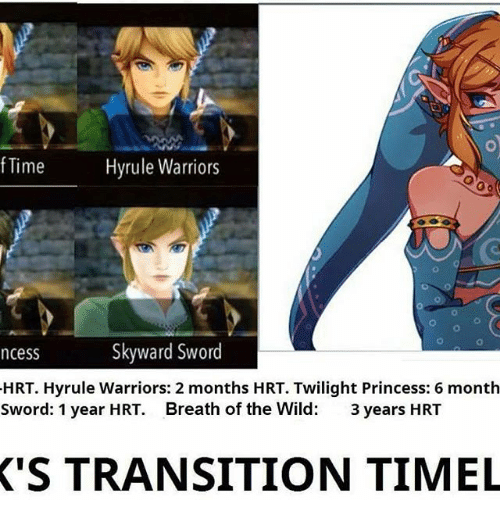 Warriors Into The Wild Setting: Funny Breath Of The Wild Memes Of 2017 On SIZZLE