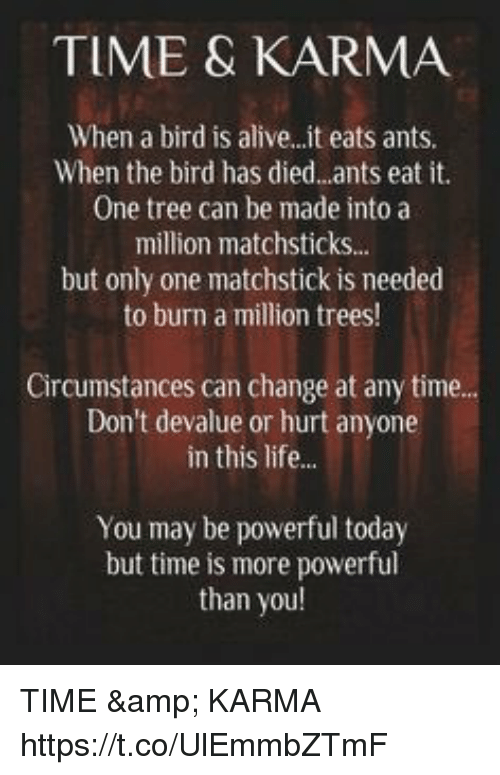 Alive, Life, and Memes: TIME & KARMA  When a bird is alive..it eats ants.  When the bird has died..ants eat it.  One tree can be made into a  million matchsticks..  but only one matchstick is needed  to burn a million trees!  Circumstances can change at any time.  Don't devalue or hurt anyone  in this life...  You may be powerful today  but time is more powerful  than you TIME & KARMA https://t.co/UlEmmbZTmF