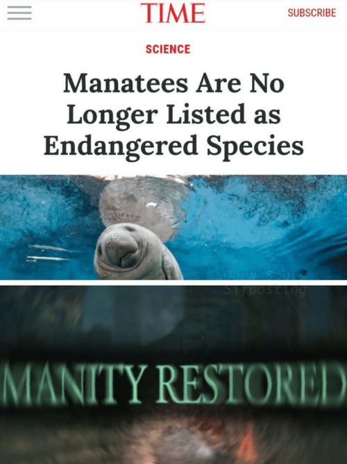 Endangered: TIME  SUBSCRIBE  SCIENCE  Manatees Are No  Longer Listed as  Endangered Species  SLposting  MANITY RESTORED