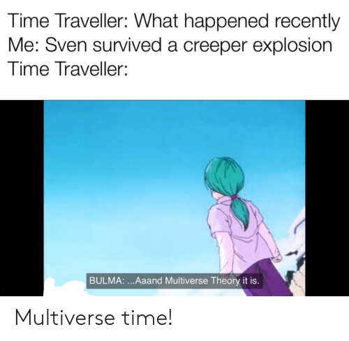 Bulma: Time Traveller: What happened recently  Me: Sven survived a creeper explosion  Time Traveller  BULMA:...Aaand Multiverse Theory it is. Multiverse time!