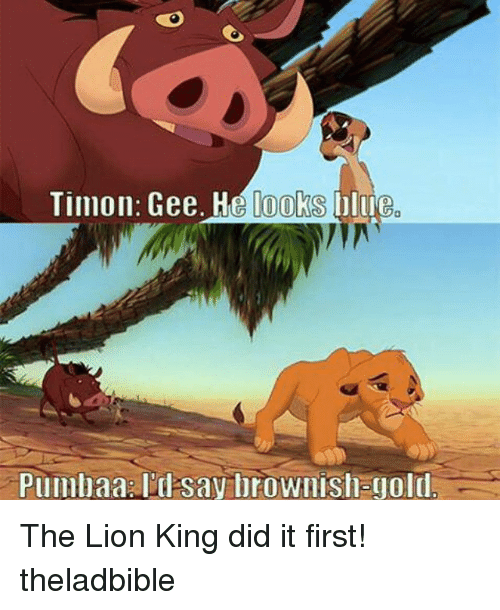 Lions: Timon: Gee. He looks blue The Lion King did it first! theladbible