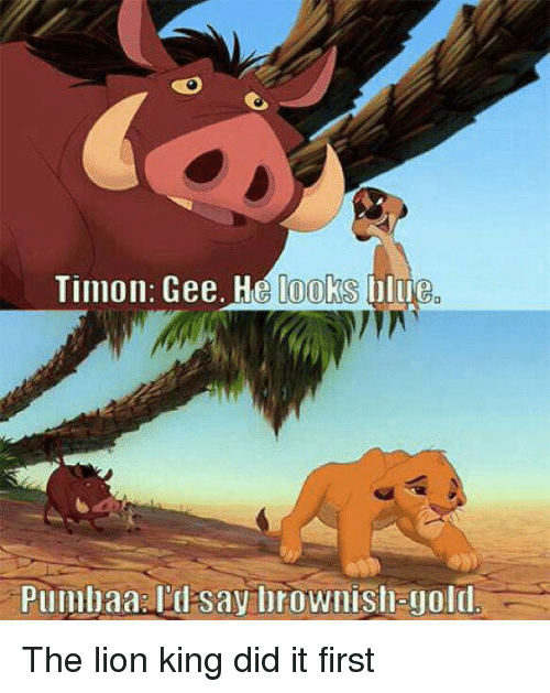 Lions: Timon. Gee. He looks lue  Plllllllaa say brownishagold The lion king did it first
