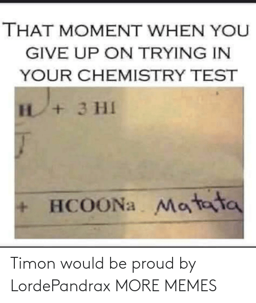 Be Proud: Timon would be proud by LordePandrax MORE MEMES
