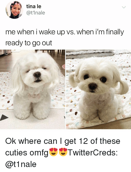 cuties: tina le  @t1nale  me when i wake up vs. when i'm finally  ready to go out Ok where can I get 12 of these cuties omfg😍😍TwitterCreds: @t1nale